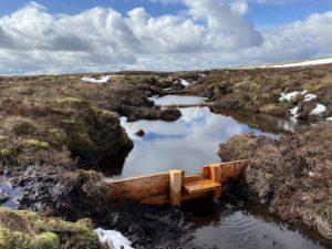 Dales peatland 'a stirring scene of restoration'
